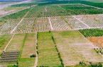 اجرای طرح کاداستر در سطح ۶۸۰ هزار هکتار از اراضی استان ایلام