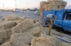 توقیف ۳۰ دستگاه خودرو حامل کاه قاچاق در ایلام