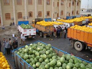مدیر جهاد کشاورزی مهران خبر داد: صادرات ۱۱۲ هزار تن محصولات کشاورزی به کشور عراق در سال ۹۷