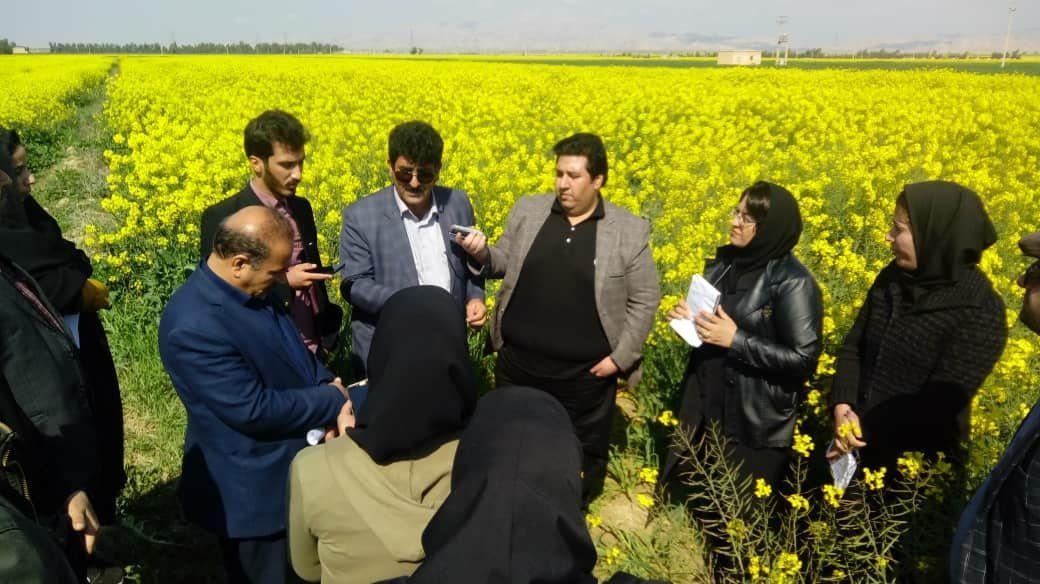 مدیرکل جهادکشاورزی استان ایلام خبر داد : احداث 18 هزار هکتار شبکه های آبیاری در سامانه گرمسیری